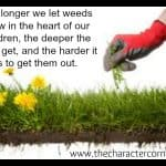 Don't Let the Little Weeds Go!