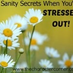 Sanity secrets for stress