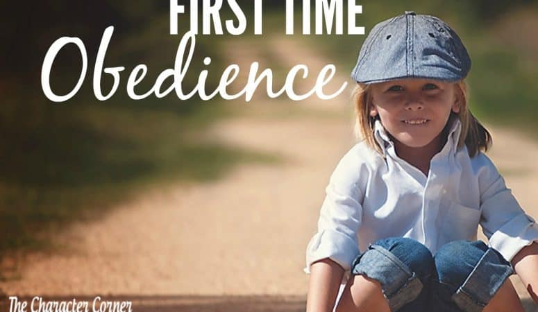 10 Tips for First Time Obedience