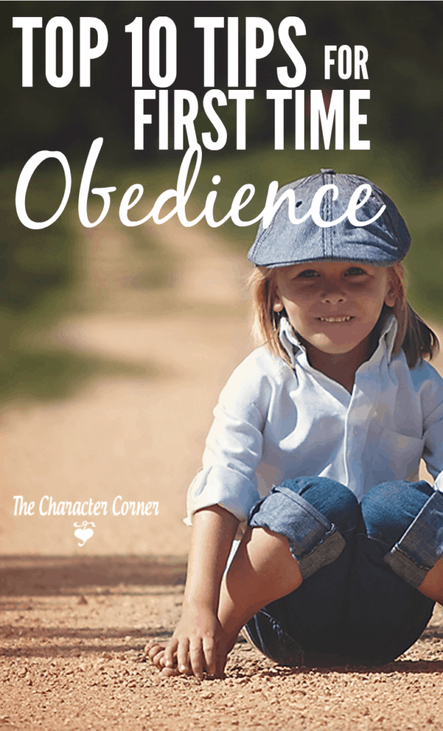 Top 10 Tips for First Time Obedience Pin