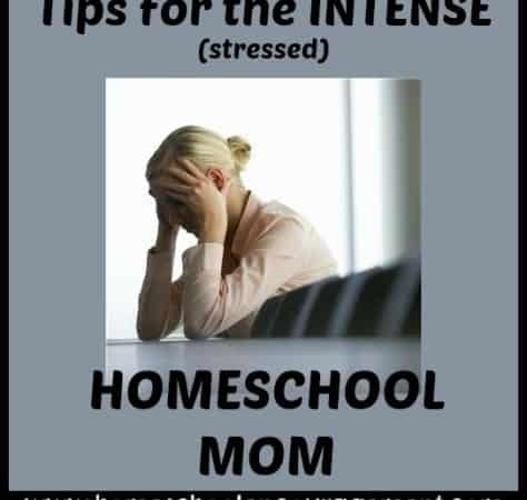 5 Tips For the Intense (Stressed!) Homeschooling Mom