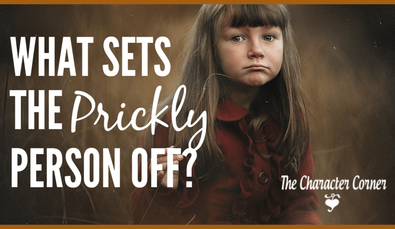 6 Of The Most Common Triggers For Prickly People