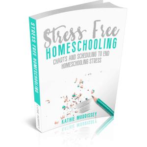 StressFreeHomeschooling3D