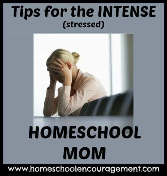 tips for intense homeschooling mom