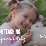 5 Tips For Teaching Kids Responsibility