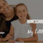 Homeschooling Isn't Enough (My Little Secret)