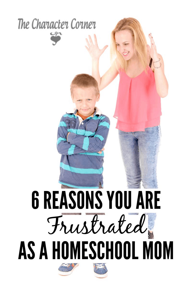 Why you may be frustrated as a homeschool mom!