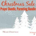 Christmas Sale & Savings