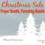 Christmas Sale & Savings