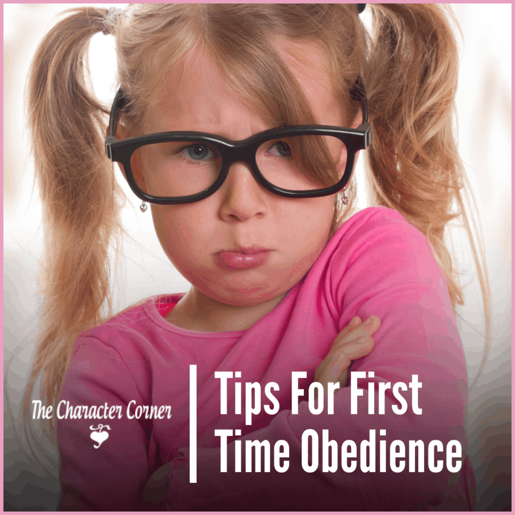Tips For First Time Obedience