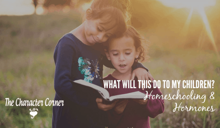 What Will This Do To My Children? Homeschooling & Hormones – 4