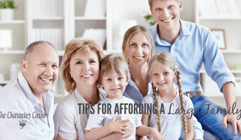Tips For Affording a Large Family