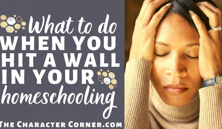 What To Do When You Hit A Wall In Your Homeschooling