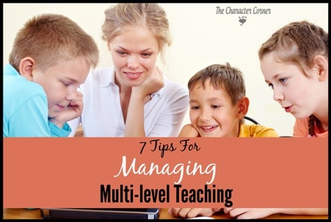 7 Tips for Multi-level Teaching