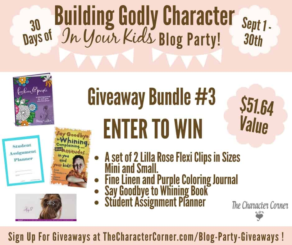 Giveaway Bundle 3 Building Godly Character Blog Party Image