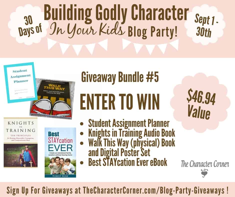 Giveaway Bundle 5 Building Godly Character Blog Party Image