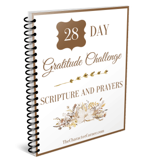 28 Day gratitude challenge journal
