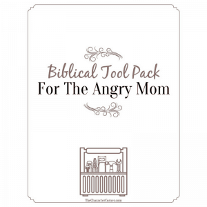 Biblical Tool Pack For the Angry Mom Blog Image