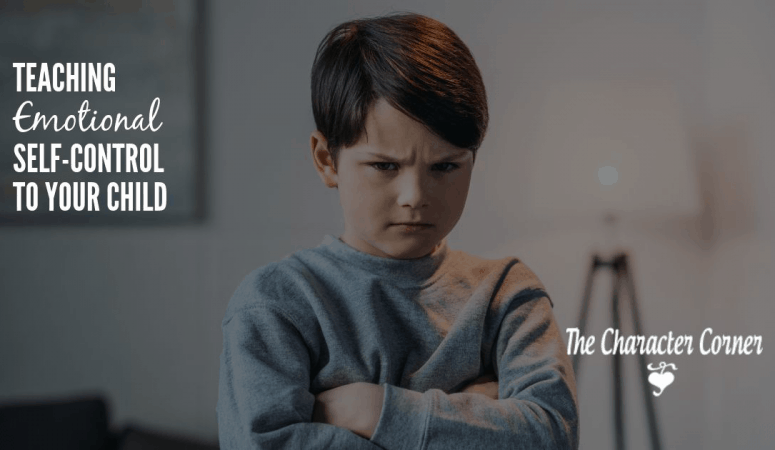 Teaching Emotional Self Control To Your Child