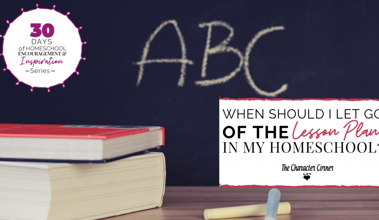 WHEN SHOULD I LET GO OF THE LESSON PLAN IN MY HOMESCHOOL?