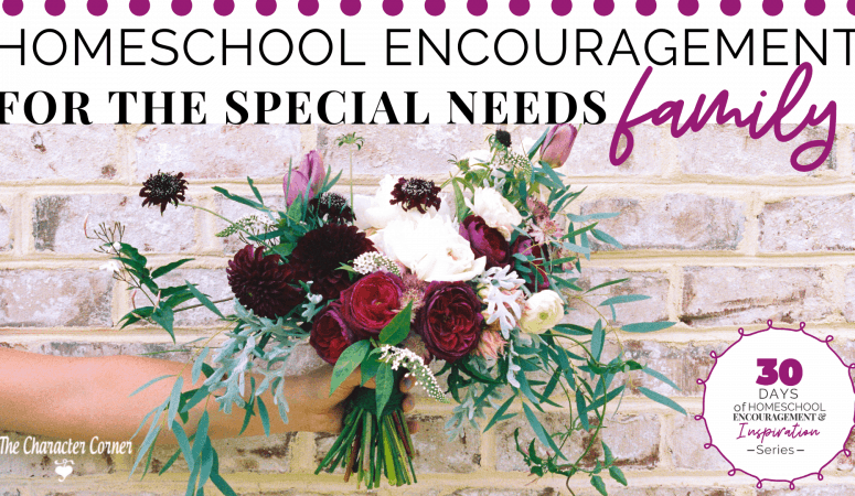 HOMESCHOOL ENCOURAGEMENT FOR THE SPECIAL NEEDS FAMILY