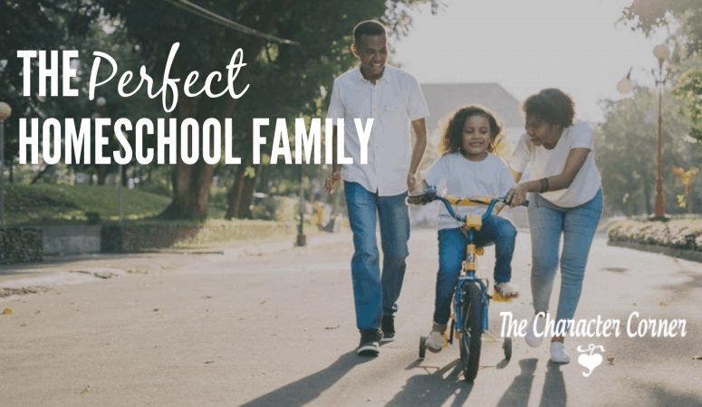 The Perfect Homeschool Family