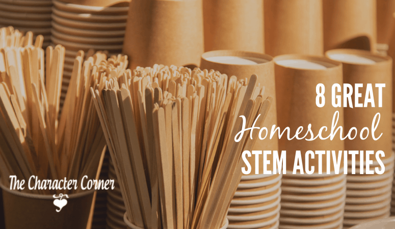 8 Great Homeschool STEM Activities