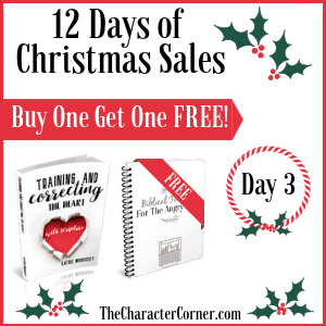 Day 3 Products 12 Days of Christmas Promo Graphics The Character Corner