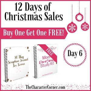 Day 6 Products 12 Days of Christmas Promo Graphics The Character Corner