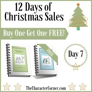 Day 7 12 Days of Christmas Sales the Character Corner