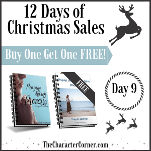 Day 9 12 Days of Christmas Promo Graphics The Character Corner