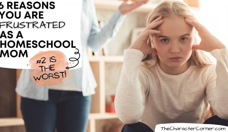 6 Reasons You Are Frustrated as a Homeschool Mom