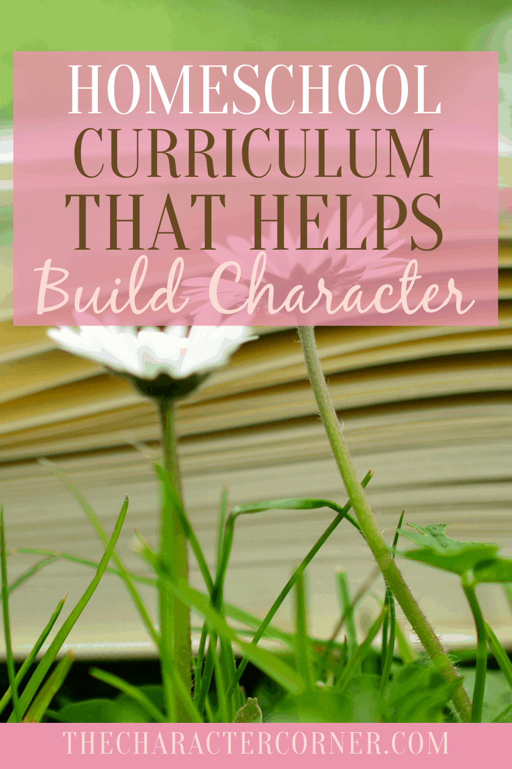 curriculum that builds character
