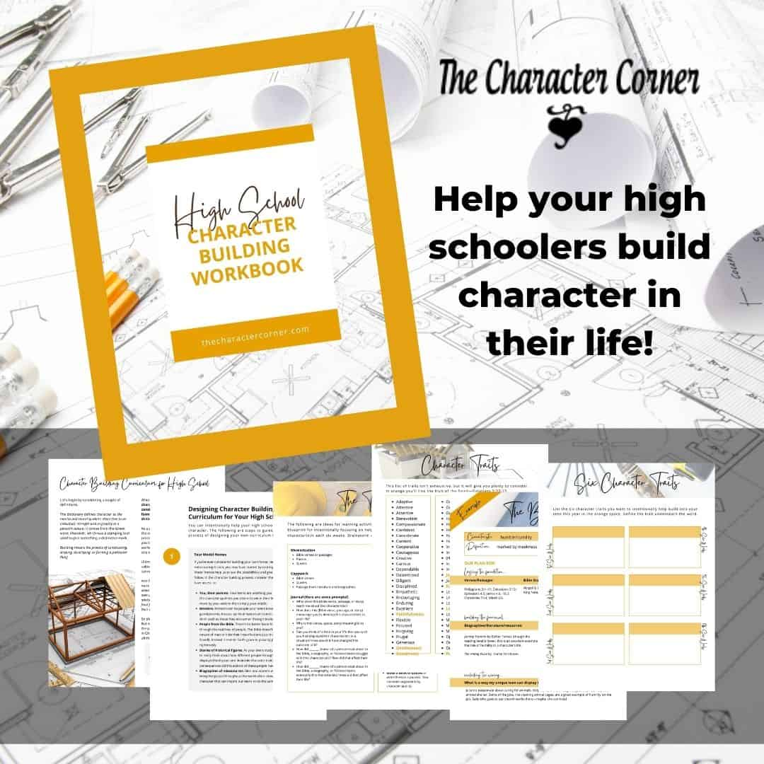 preview of the high school character building workbook