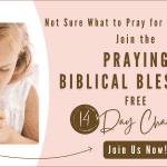 How to Pray Biblical Blessings For Your Child: 14 Day Challenge