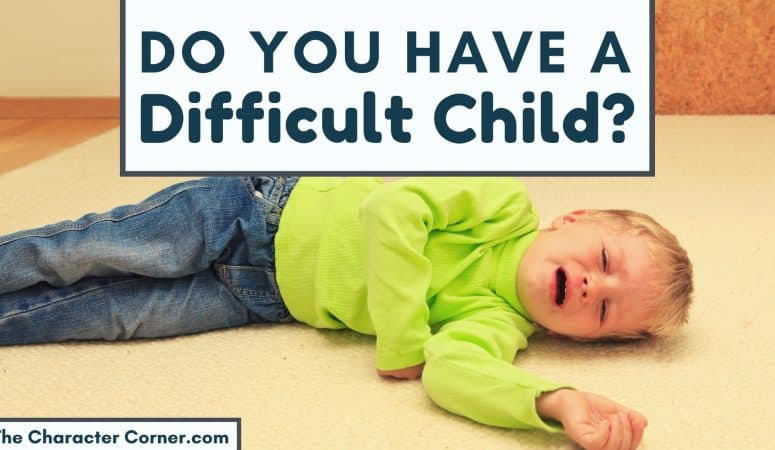 Dealing With a Difficult Child