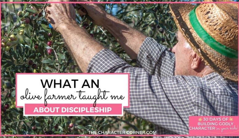 What an Olive Farmer Taught Me About Discipleship